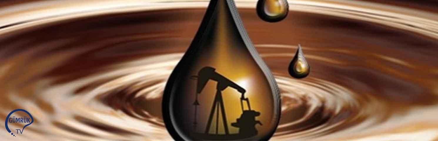 Rusya, Belarus'a Petrol İhracatını Kısıtlamayı Planlıyor