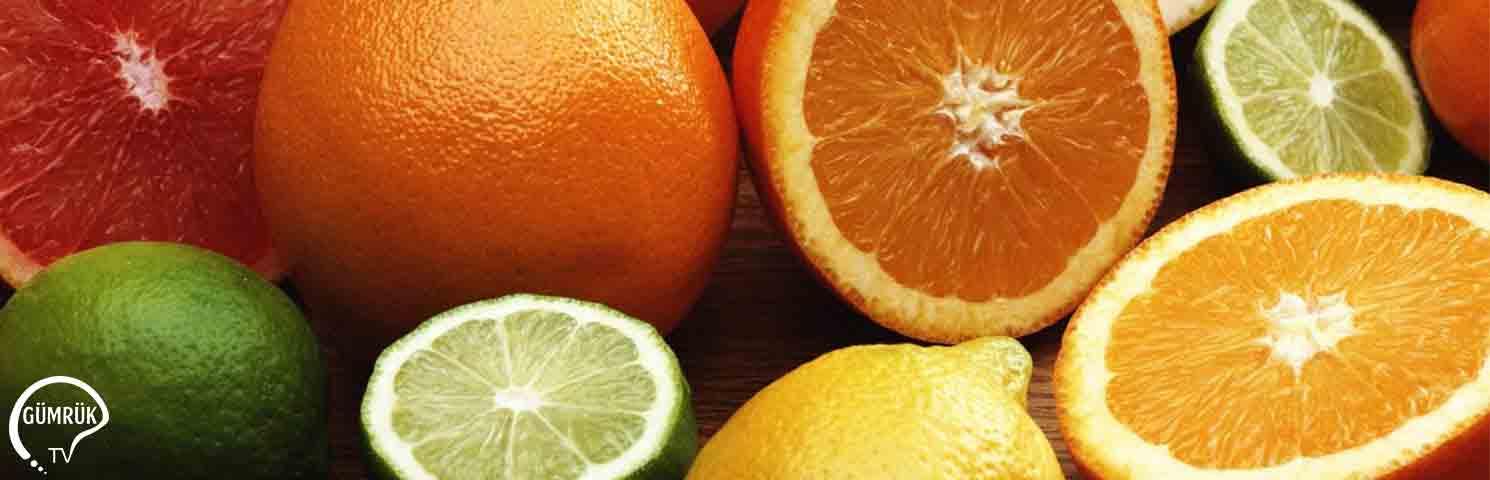 Rusya 22 Ton Türk Portakalını Geri Çevirdi