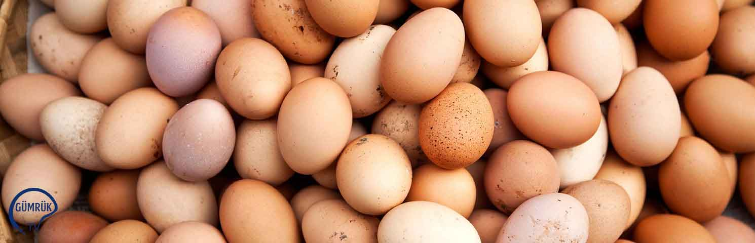 Yumurta İhracatı Yüzde 5 Arttı