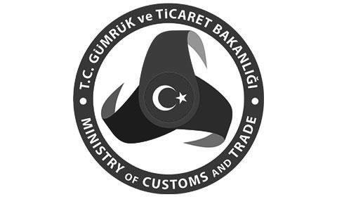 Gümrük ve Ticaret Müfettişi İnceleme Raporu