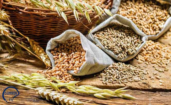 Çavdar, Tritikale, Buğday, Yulaf, Arpa Standartları Taslağı Hazırlandı