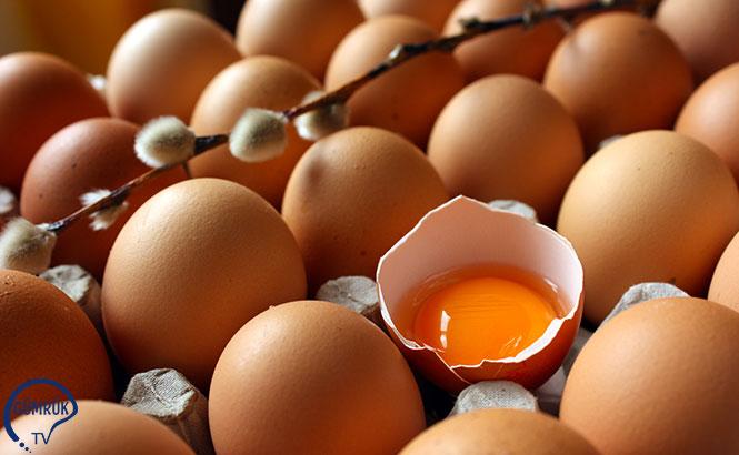 Irak'a Yumurta İhracatı Afyonkarahisar'dan