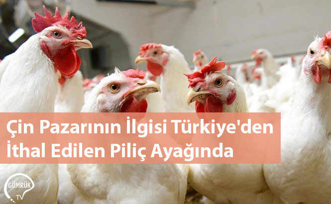 Çin Pazarının İlgisi Türkiye'den İthal Edilen Piliç Ayağında