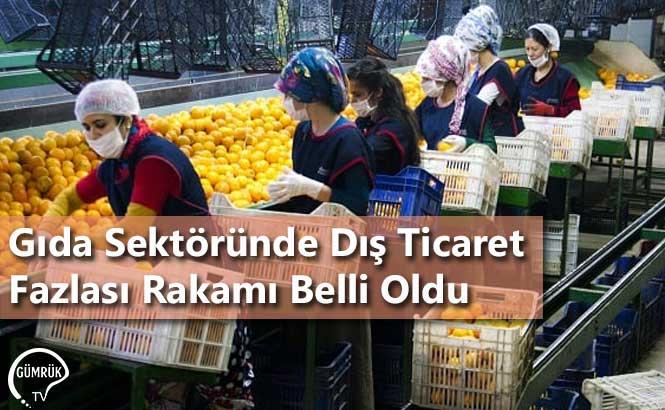 Gıda Sektöründe Dış Ticaret Fazlası Rakamı Belli Oldu