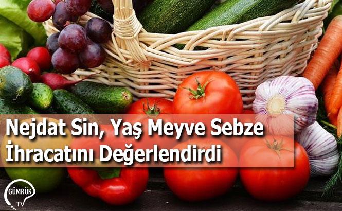 Nejdat Sin, Yaş Meyve Sebze İhracatını Değerlendirdi