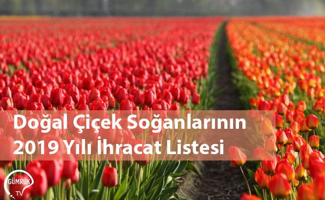 Doğal Çiçek Soğanlarının 2019 Yılı İhracat Listesi