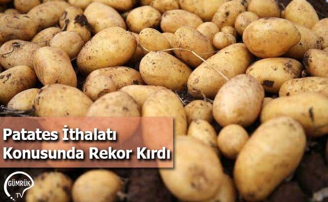 Patates İthalatı Konusunda Rekor Kırdı