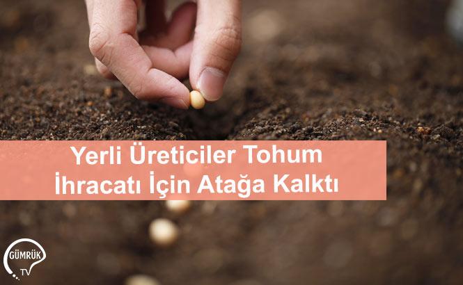 Yerli Üreticiler Tohum İhracatı İçin Atağa Kalktı