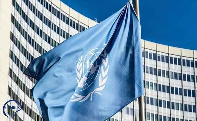 Birleşmiş Milletler AEK Toplantısı İçin Görüş Talebi
