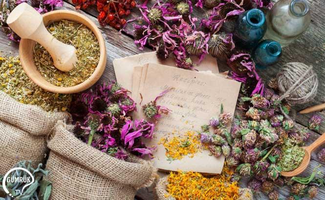 Tıbbi ve Aromatik Bitki Ticareti Artıyor