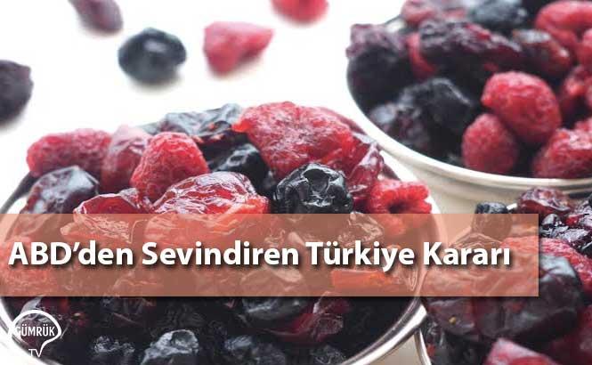 ABD'den Sevindiren Türkiye Kararı