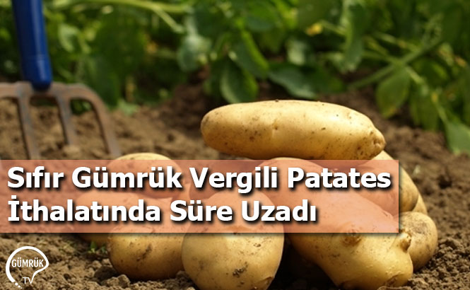 Sıfır Gümrük Vergili Patates İthalatında Süre Uzadı