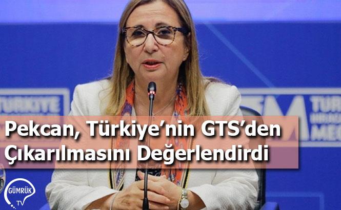Pekcan, Türkiye'nin GTS'den Çıkarılmasını Değerlendirdi