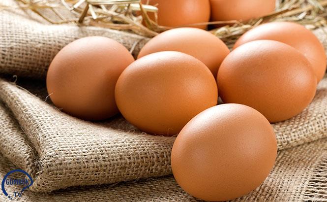 İran'ın Yumurta İthalatı Kararı, Türkiye'yi Etkiler mi?