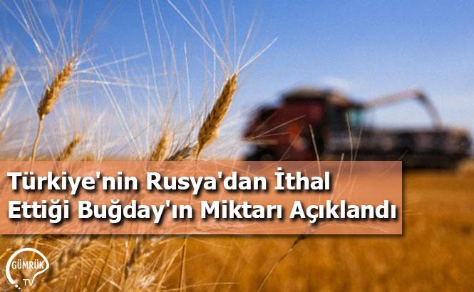 Türkiye'nin Rusya'dan İthal Ettiği Buğday'ın Miktarı Açıklandı