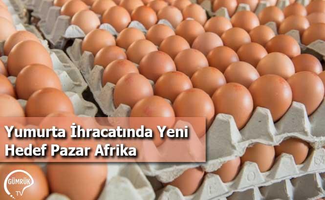 Yumurta İhracatında Yeni Hedef Pazar Afrika