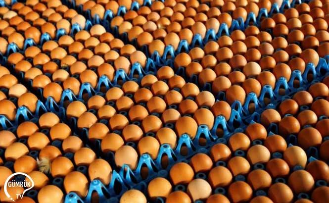 Türk Yumurta İhracatçısına İran'dan Yakın Takip