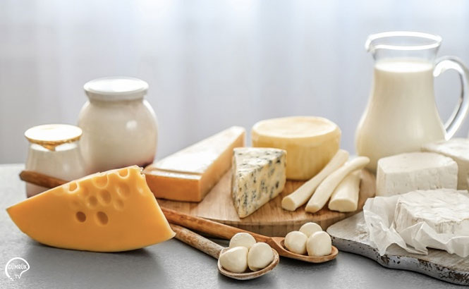 ÇİN'e Süt ve Süt Ürünleri İhracatı