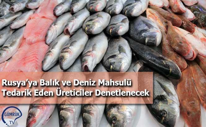 Rusya'ya Balık ve Deniz Mahsulü Tedarik Eden Üreticiler Denetlenecek