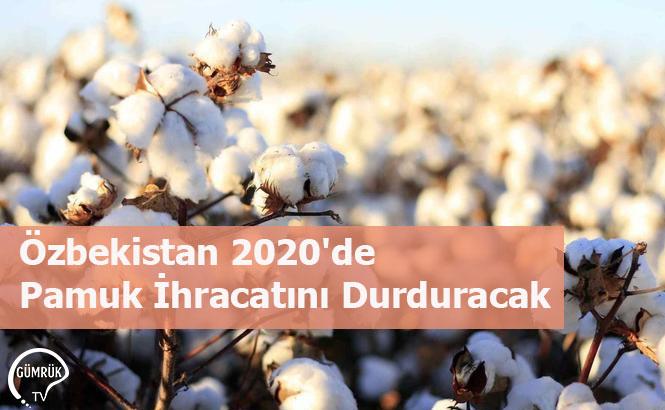 Özbekistan 2020'de Pamuk İhracatını Durduracak