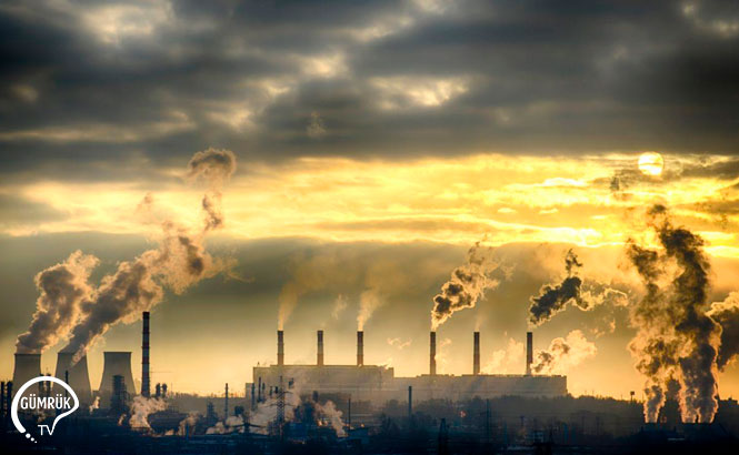 Türkiye Paris İklim Anlaşması'nı Meclisin Onayına Sunacak