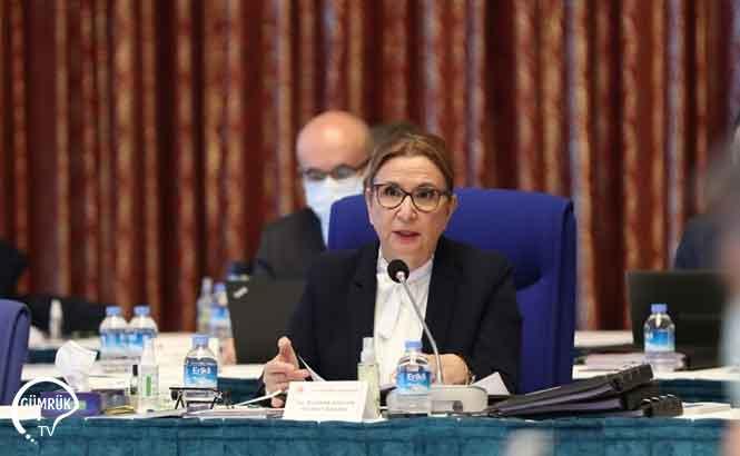 Ruhsar Pekcan 2021 Yılı Bütçesi TBMM Plan ve Bütçe Komisyonu'nda Konuştu