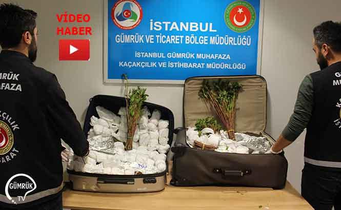 İstanbul Havalimanında 208 Kilo Uyuşturucu Ele Geçirildi