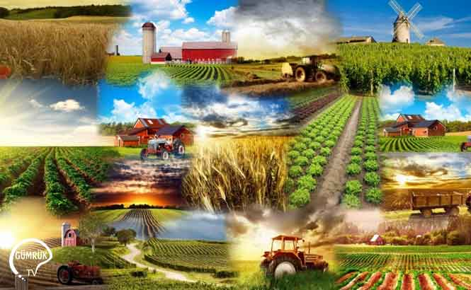 Kırsal Ekonomik Altyapı Yatırımlarının Desteklenmesi Hakkında Tebliğ