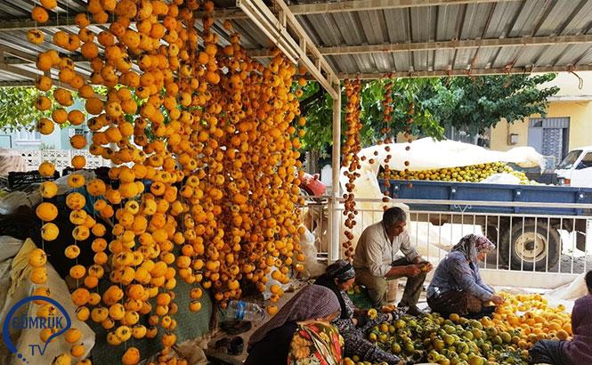 Hediyelik 'Cennet Elması' İhracatçıya Umut Oldu