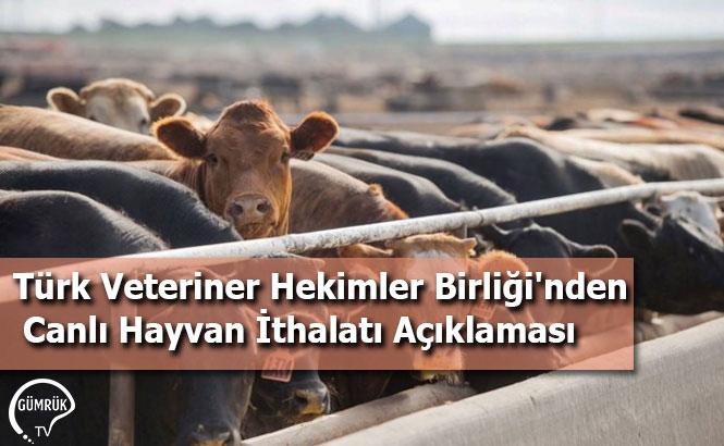 Türk Veteriner Hekimler Birliği'nden Canlı Hayvan İthalatı Açıklaması