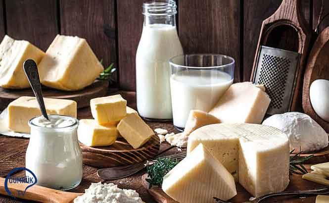 Bergama'da Tarıma Dayalı İhtisas Süt Organize Sanayi Bölgesi Kuruluyor