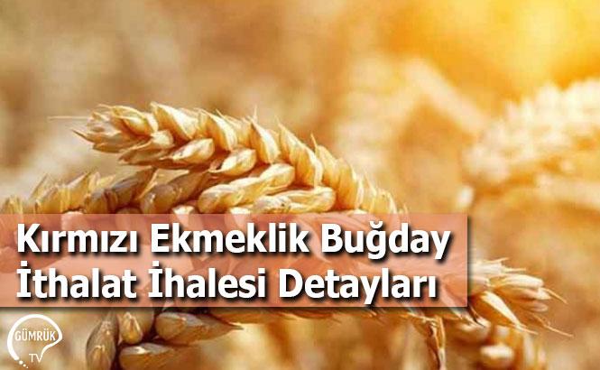 Kırmızı Ekmeklik Buğday İthalat İhalesi Detayları