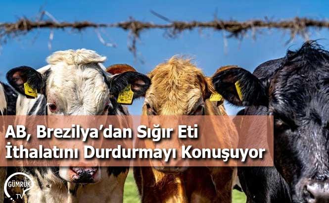 AB, Brezilya'dan Sığır Eti İthalatını Durdurmayı Konuşuyor
