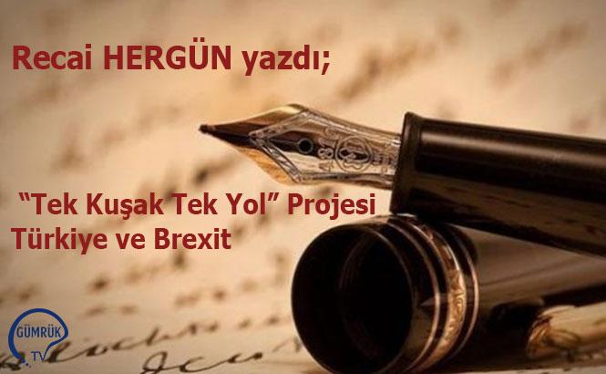 """""""Tek Kuşak Tek Yol"""" Projesi -Türkiye ve Brexit"""