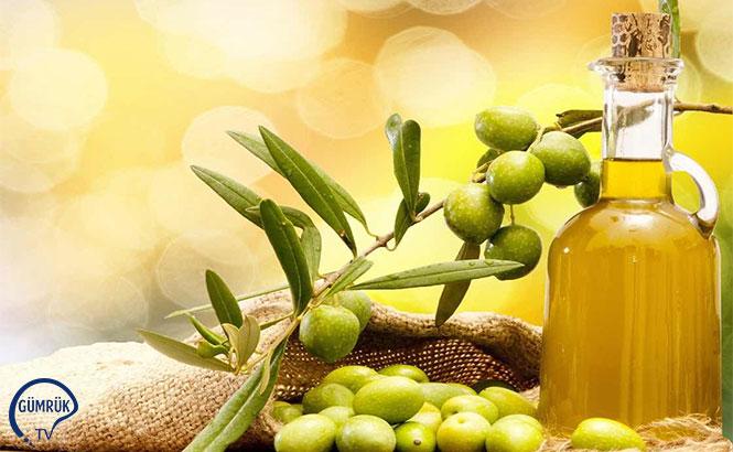 Zeytinyağı İhracatı Katlandı