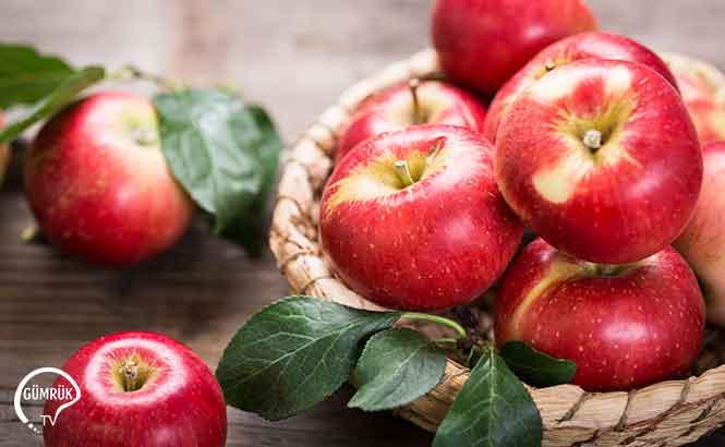 Tayland'a Elma İhracat Şartları