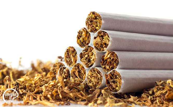 Tütün Sözleşme Süresi Uzatıldı