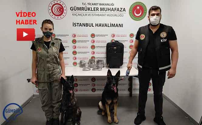 İstanbul Havalimanı'nda Başarılı Uyuşturucu Operasyonları