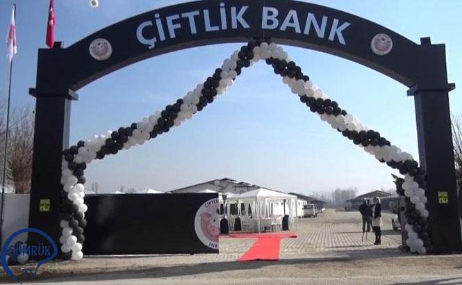 """""""Çiftlikbank"""" Reklamlarına Durdurma Cezası"""
