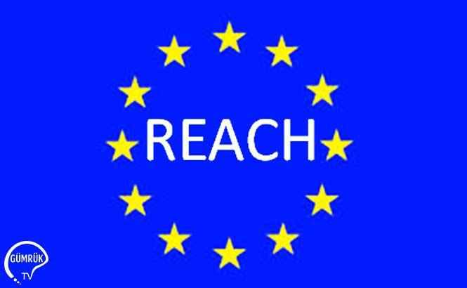 Avrupa Komisyonu REACH Tüzüğü Hakkında