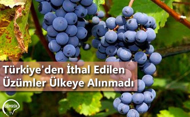 Türkiye'den İthal Edilen Üzümler Ülkeye Alınmadı