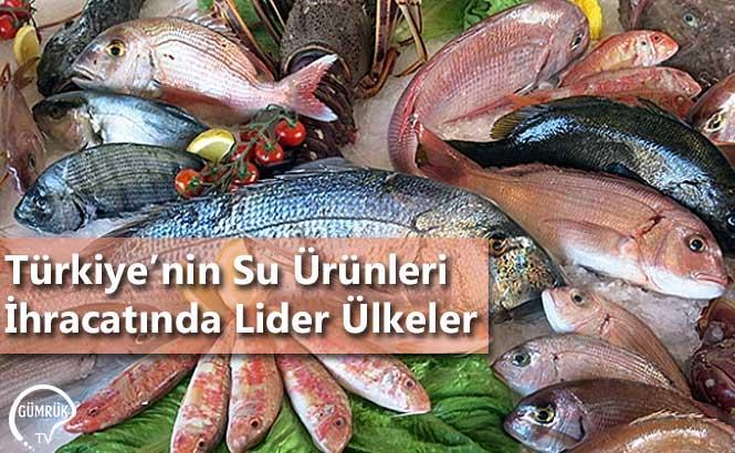 Türkiye'nin Su Ürünleri İhracatında Lider Ülkeler