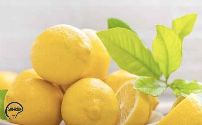 Limon İhracatı İzne Bağlandı