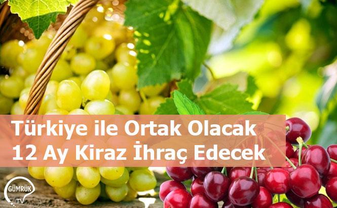 Türkiye ile Ortak Olacak 12 Ay Kiraz İhraç Edecek