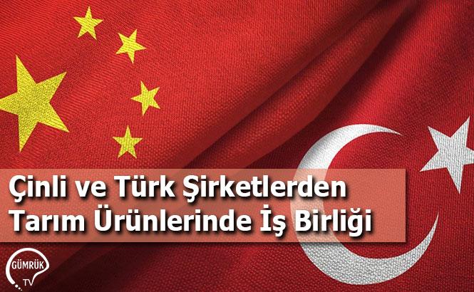 Çinli ve Türk Şirketlerden Tarım Ürünlerinde İş Birliği