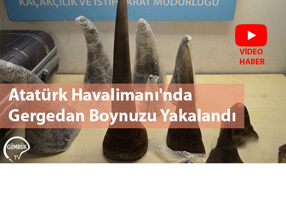 Atatürk Havalimanı'nda Gergedan Boynuzu Yakalandı