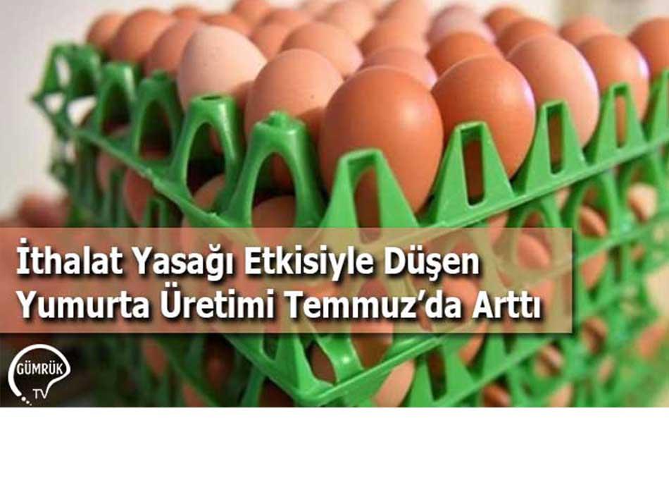 İthalat Yasağı Etkisiyle Düşen Yumurta Üretimi Temmuz'da Arttı