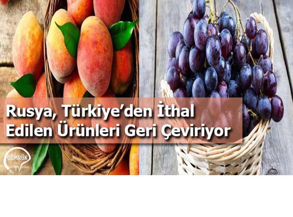 Rusya, Türkiye'den İthal Edilen Ürünleri Geri Çeviriyor