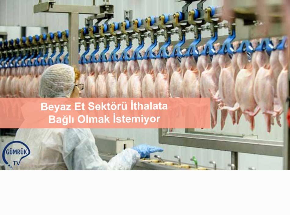 Beyaz Et Sektörü İthalata Bağlı Olmak İstemiyor