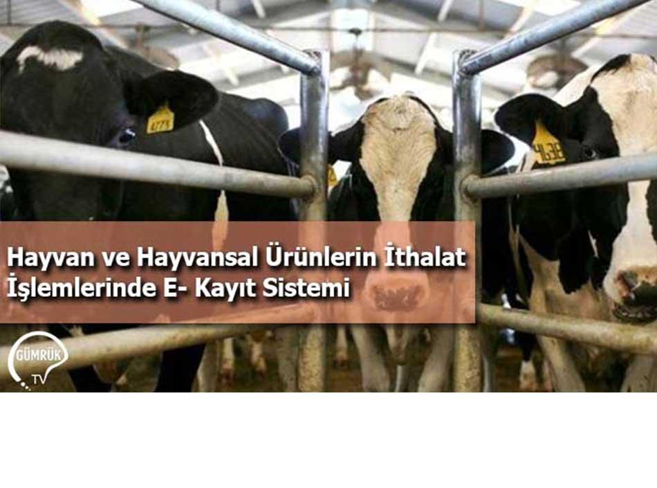 Hayvan ve Hayvansal Ürünlerin İthalat İşlemlerinde E-Kayıt Sistemi